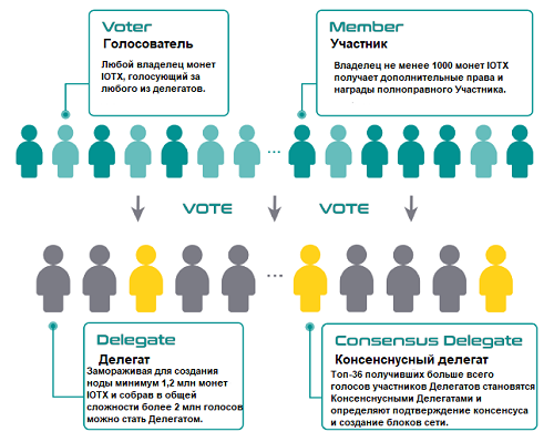 Голосование в сети IoTeX